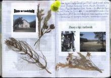 Wolin, czerwiec 2003 - Księga Wypraw 1s069