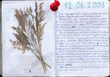 Wolin, czerwiec 2003 - Księga Wypraw 1s070