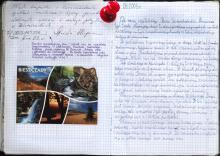 Bieszczady, sierpień 2003 - Księga Wypraw 1s084