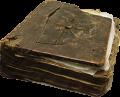 Księga podróżnika